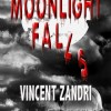 Moonlight Falls Virtual Book Tour May 2010