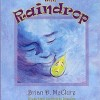 The Raindrop by Brian D. McClure Virtual Book Tour April 2010