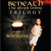 Beneath the Silver Lining Trilogy Virtual Book Tour November, December & January '10 and '11