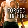 Guest Blogger: How I made $23,500 in 4 months self-publishing my novel 'Forged in Fire' by Trish McCallan