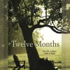New Fiction Novel For Review: Twelve Months by Steven Manchester
