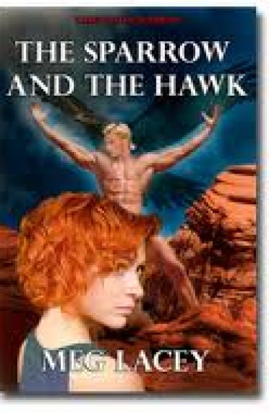 Pump Up Your Book Presents The Sparrow and the Hawk Virtual Book Publicity Tour