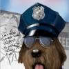 {YA} K-9 Cop Blog Tour Sign Up