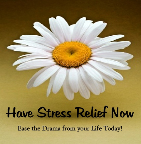 HaveStressRelief_logo_logo_medium