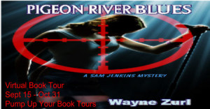 Pigeon River Blues Banner