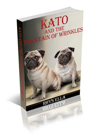 Kato and the Fountain of Wrinkles 3