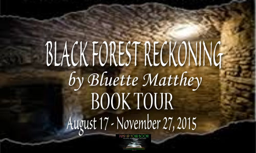 Black Forest Reckoning Book Banner