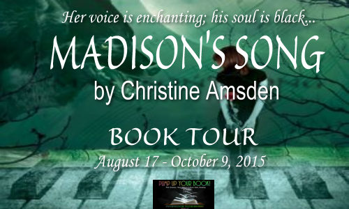 Madison's Song Book Banner