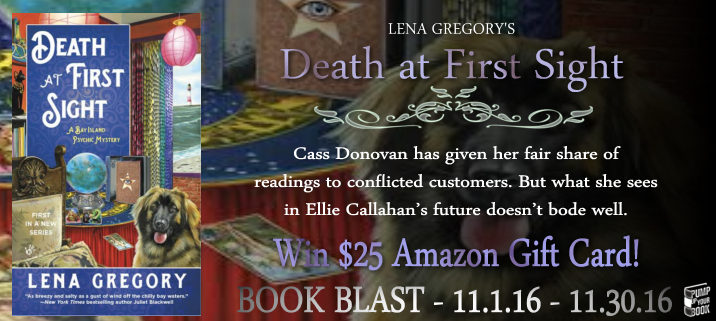 death-at-first-sight-book-blast-banner