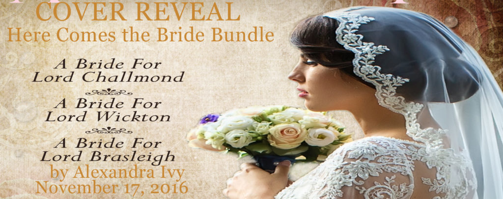here-comes-the-bride-bundle-banner