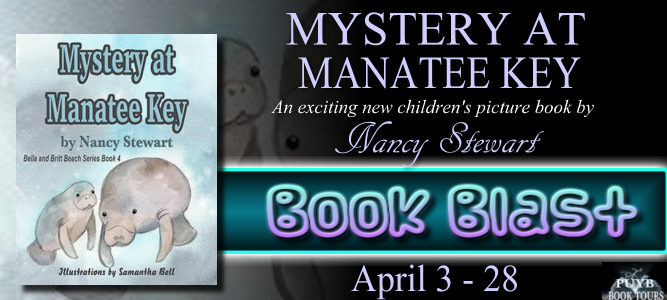 Mystery at Manatee Key banner