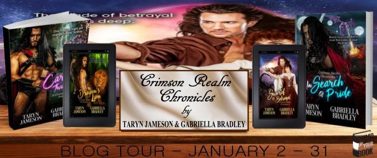 Crimson Realm Chronicles Banner 2