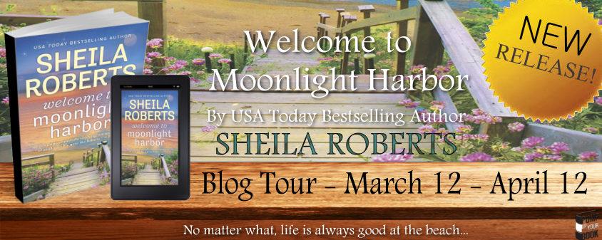 Welcome to Moonlight Harbor banner