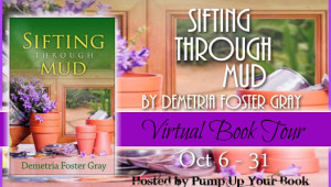 Sifting Through Mud banner